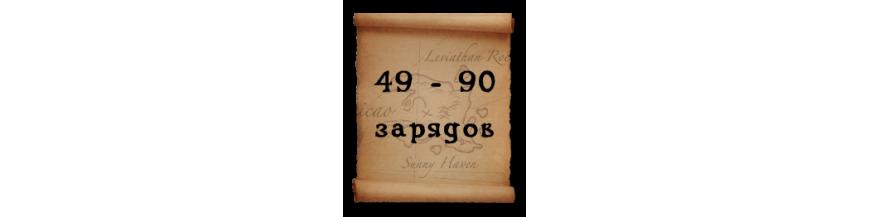 Категория 49 - 90 зарядов